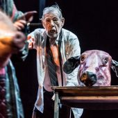 Ian McKellen as King Lear
